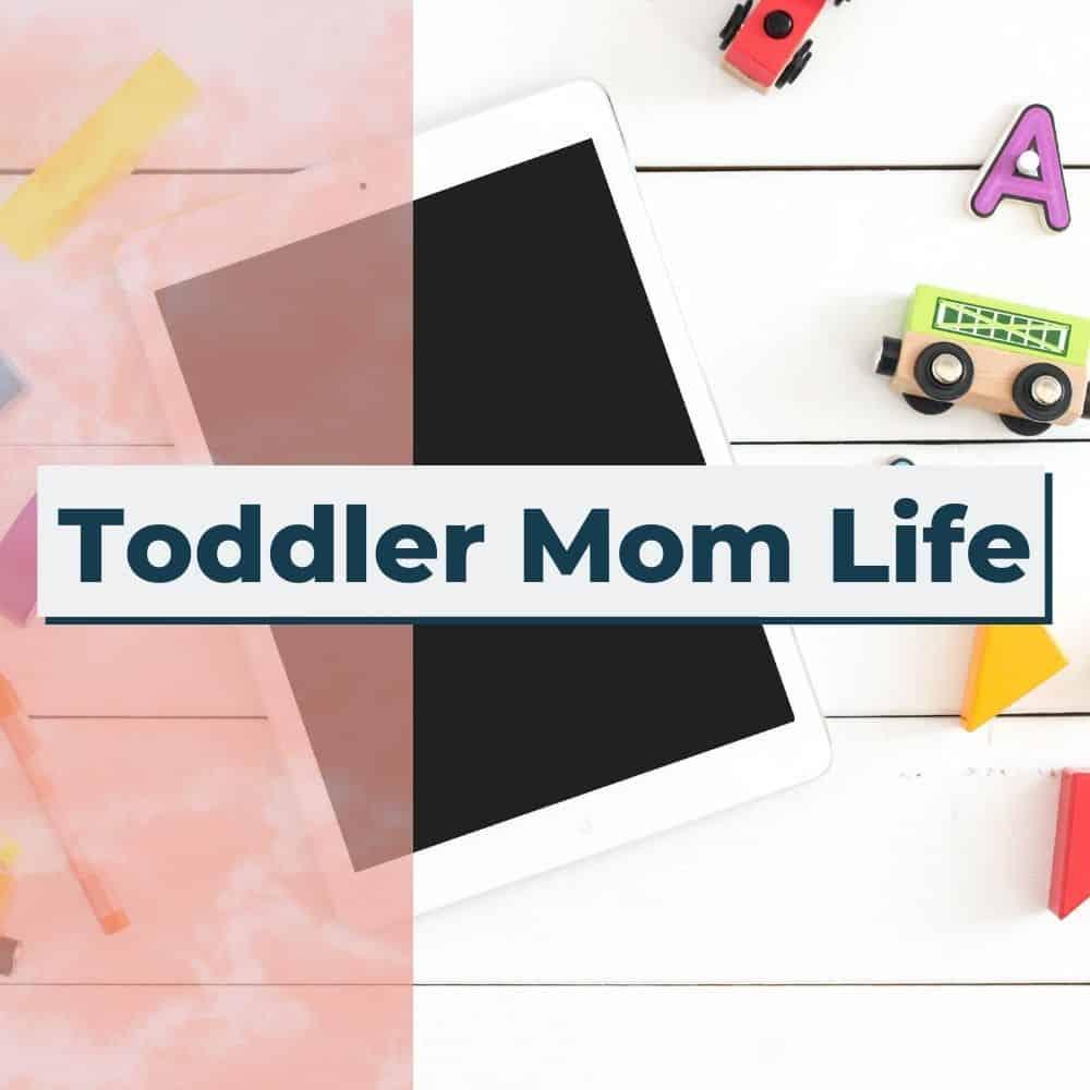 toddler mom life